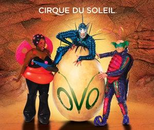 cirque-OVO-thumb.jpg