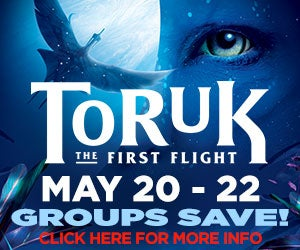 Groups Save on Cirque du Soleil - Toruk